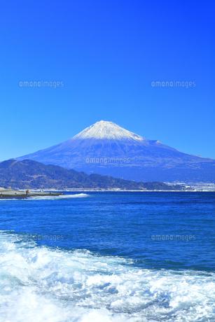 三保の松原より冠雪の富士山の写真素材 [FYI04774864]