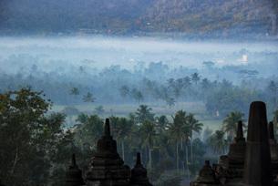 神秘的、世界遺産ボロブドゥールからのジャングルの朝靄の写真素材 [FYI04774869]