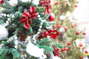 クリスマスツリーの写真素材 [FYI04774932]