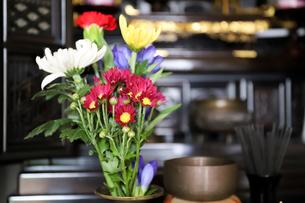 仏壇の前に飾る仏花の写真素材 [FYI04775221]