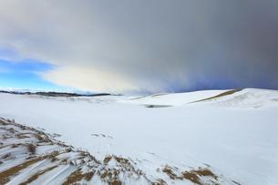 冬の鳥取砂丘雪景色の写真素材 [FYI04775495]