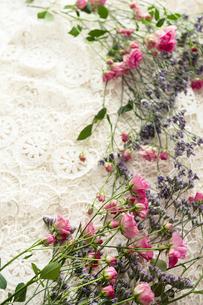 レースの上に置かれたピンクのバラと紫色のスターチスの写真素材 [FYI04775659]
