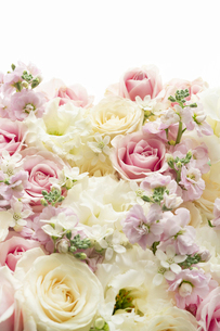 バラとトルコキキョウのアレンジメントの写真素材 [FYI04775661]