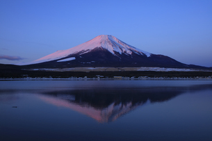 山中湖から望む朝焼けの富士山の写真素材 [FYI04775745]