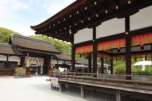 京都下鴨神社の舞殿と葵生殿 世界遺産の下鴨神社の写真素材 [FYI04775833]
