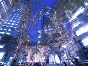 東京都 丸の内仲通りのイルミネーションの写真素材 [FYI04776155]
