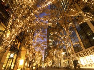 東京都 丸の内仲通りのイルミネーションの写真素材 [FYI04776165]