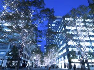 東京都 丸の内仲通りのイルミネーションの写真素材 [FYI04776166]