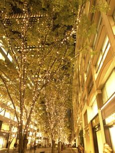 東京都 丸の内仲通りのイルミネーションの写真素材 [FYI04776171]