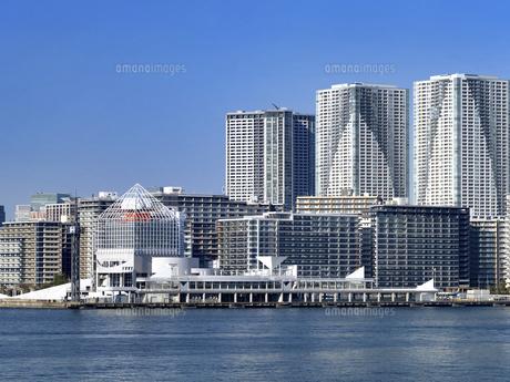 東京都 晴海客船ターミナルと高層マンション街の写真素材 [FYI04776191]