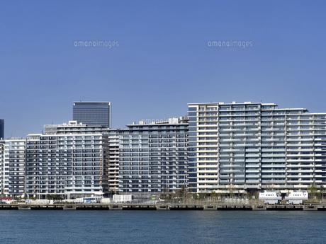 東京都 晴海客船ターミナルと高層マンション街の写真素材 [FYI04776199]