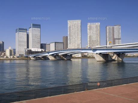 晴海大橋と豊洲ぐるり公園 東京都の写真素材 [FYI04776212]
