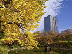 東京都 日比谷公園と東京ミッドタウン日比谷の写真素材 [FYI04776227]