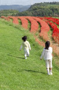 花畑で遊ぶ女の子と男の子の写真素材 [FYI04776559]