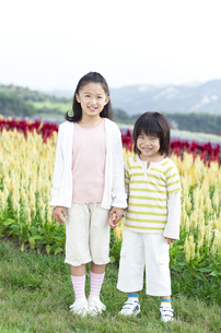 花畑で手をつなぐ女の子と男の子の写真素材 [FYI04776562]