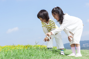 花畑で遊ぶ女の子と男の子の写真素材 [FYI04776580]