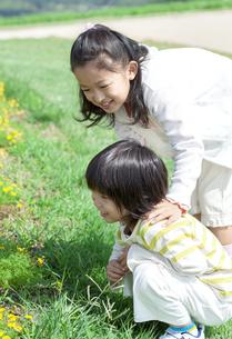 花畑で遊ぶ女の子と男の子の写真素材 [FYI04776583]