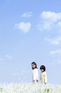 花畑を歩く女の子と男の子の写真素材 [FYI04776584]