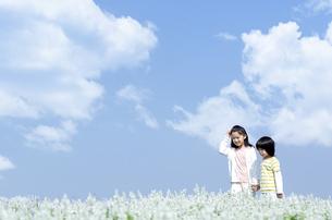 花畑を歩く女の子と男の子の写真素材 [FYI04776585]
