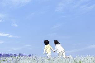 花畑を走る女の子と男の子の写真素材 [FYI04776587]