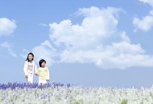 花畑を歩く女の子と男の子の写真素材 [FYI04776589]