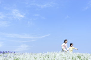 花畑を走る女の子と男の子の写真素材 [FYI04776591]