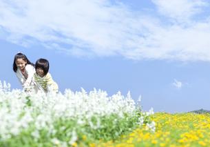 花畑で遊ぶ女の子と男の子の写真素材 [FYI04776593]