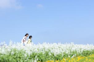 花畑を走る女の子と男の子の写真素材 [FYI04776595]