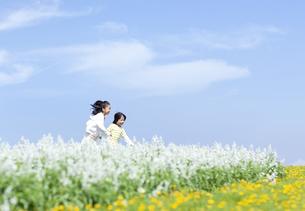 花畑を走る女の子と男の子の写真素材 [FYI04776597]