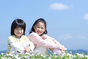 花畑に座る女の子と男の子の写真素材 [FYI04776599]