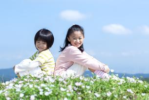 花畑に座る女の子と男の子の写真素材 [FYI04776601]