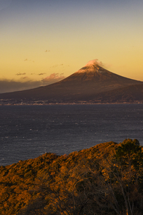 朝日に照る富士山と駿河湾と森の写真素材 [FYI04776636]