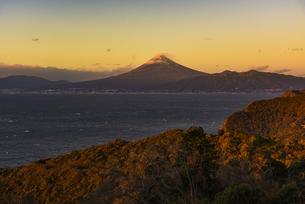 朝日に照る富士山と駿河湾と森の写真素材 [FYI04776638]