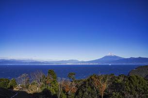 富士山と青い駿河湾、森の写真素材 [FYI04776667]
