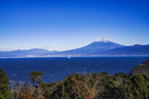 富士山と青い駿河湾、森の写真素材 [FYI04776670]