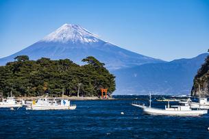 富士山と諸口神社の鳥居、漁船の写真素材 [FYI04776673]