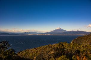 富士山と駿河湾、森の写真素材 [FYI04776676]