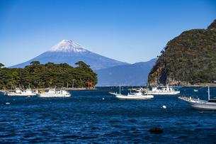 富士山と戸田漁港、諸口神社の鳥居の写真素材 [FYI04776681]