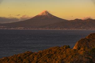 富士山と駿河湾の朝日と森の写真素材 [FYI04776683]