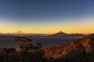 富士山と駿河湾の朝日と森の写真素材 [FYI04776684]