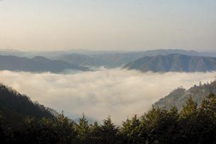 備中高梁の風景 雲海の写真素材 [FYI04776847]