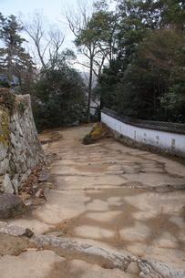 備中松山城の風景(城郭石垣)の写真素材 [FYI04776859]