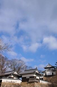 備中松山城の写真素材 [FYI04776863]