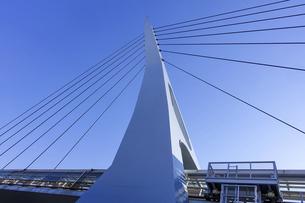 湾岸線を渡り東京テレポート駅とお台場海浜公園駅を結ぶるテレポートブリッジの写真素材 [FYI04777162]