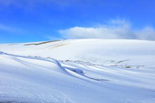 冬の鳥取砂丘雪景色の写真素材 [FYI04777192]