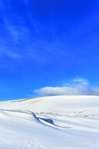 冬の鳥取砂丘雪景色の写真素材 [FYI04777193]