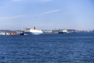 有明埠頭の貨物船(ゆりかもめ線 青海駅前 水の広場公園から)の写真素材 [FYI04777220]