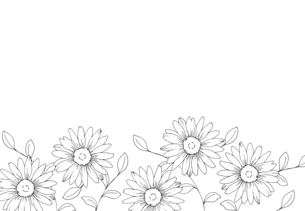 デイジーの花 手描き線画イラストのイラスト素材 [FYI04777412]