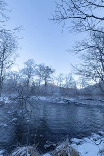 北海道 阿寒郡阿寒町の樹氷と気嵐の写真素材 [FYI04777491]
