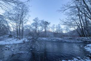 北海道 阿寒郡阿寒町の樹氷と気嵐の写真素材 [FYI04777492]
